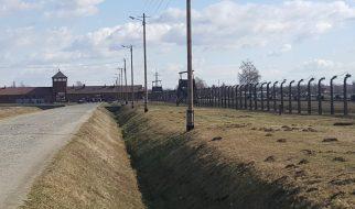 Lekcja historii w Auschwitz